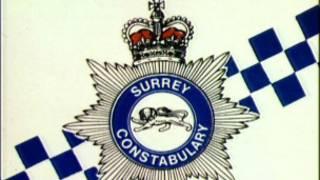 """英国警察有一个颇富诗意的别称, """"那条细蓝线""""。现实是,蓝线渐粗。"""