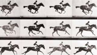 اسبهای ادوارد مایبریج