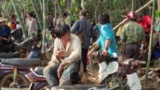 Cảnh lộn xộn ở rừng Đăk Nông