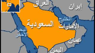 سعد الفقيه، معارض سعودي