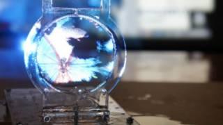 Imagem de uma borboleta é projetada em uma bolha de sabão