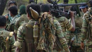 Tamil Tigers (file photo)