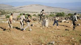 عناصر الجيش السوري الحر