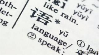چینی لغت