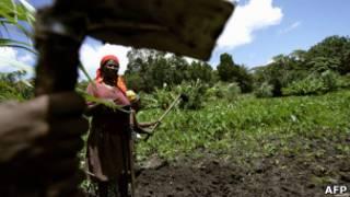 Wanawake barani Afrika