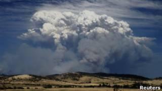 Пожары на Тасмании