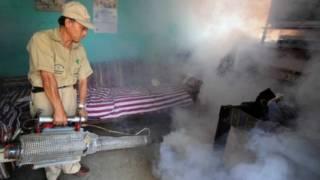 Rociamiento de insecticida