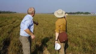 Lokasi penggalian di Burma
