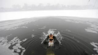 Bơi trong hồ nước bắt đầu đóng băng