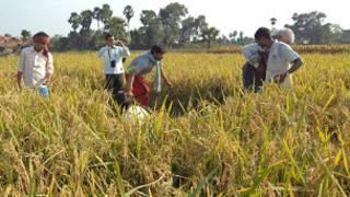 सुमंत कुमार किसान नांलदा