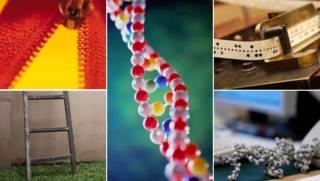 Composición del ADN