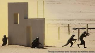 Fuzileiros navais treinando na Namíbia (Crédito: Divulgação/Comando-Geral do Corpo de Fuzileiros Navais)