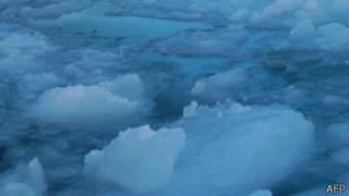Hielo ártico