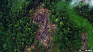 इंडोनेशिया गुनुंग लीज़र राष्ट्रीय पार्क