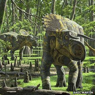 Dinossaur fossil | Foto: Raúl Martín