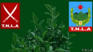 TNLA, Ta'ang Liberation National Army