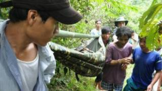 Хо Ван Ланг и его отец покидают джунгли