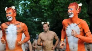 裸奔者为苏门答腊虎筹款募捐