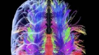 मस्तिष्क, उम्र, यादाश्त