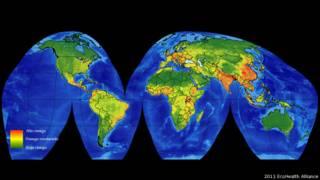 Mapa de virus
