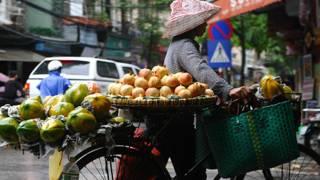 Một người bán hoa quả ở Hà Nội