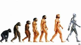 Evolución hasta androide