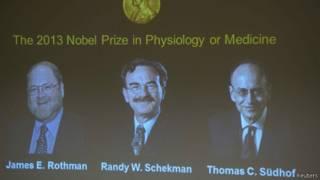 Нобелевская премия 2013 года по физиологии и медицине