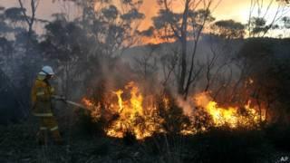 Пожарный борется с лесным пожаром в Австралии