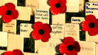 """英国,每年11月都举行纪念阵亡战士的""""罂粟日""""。"""