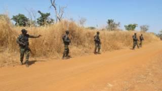 Des soldats camerounais en patrouille, à la frontière de leur pays avec le Nigeria