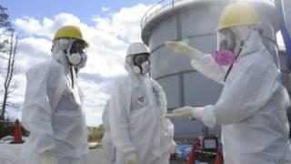 Japón: inició construcción de un muro de hielo para detener contaminación en Fukushima