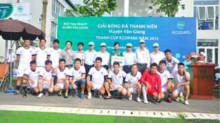 Giải bóng đá ở Ecopark