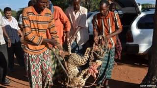 कीनिया