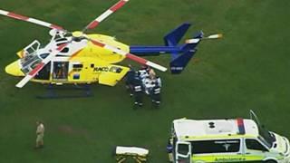 Helicóptero resgata tratador atacado por tigre na Australia (BBC)