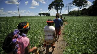 Índios Guarani-Kaiowá (crédito: Agência Brasil)