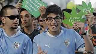 Uruguay'da esrar yasallaştı