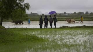 မြန်မာ့လယ်ယာမြေ