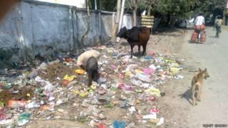 कानपुर में कूड़े का ढ़ेर