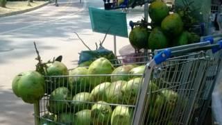 Coco sendo vendido em São Paulo