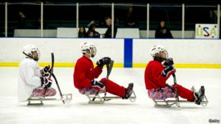 Паралимпийская сборная США по хоккею