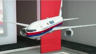 मलेशिया विमान एमएच370