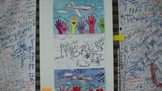 मलेशिया एयरलाइंस के लापता विमान की तलाश जारी है