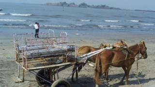 महाराष्ट्र के कोंकण इलाक़े में अलीबाग़ के समुद्र तट का एक दृश्य.