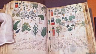 Manuscrito de Voynich