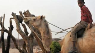 Ranar yaki da bauta a kasar Mauritania