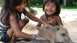 「地球上最瀕危」部落的奧瓦人