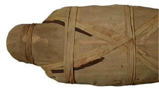 Сканирование открывает тайны мумии