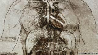 लियोनार्डो डी विंची का एक चित्र