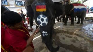 Giwaye a Thailand