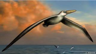 Воображаемый полет гигантской птицы